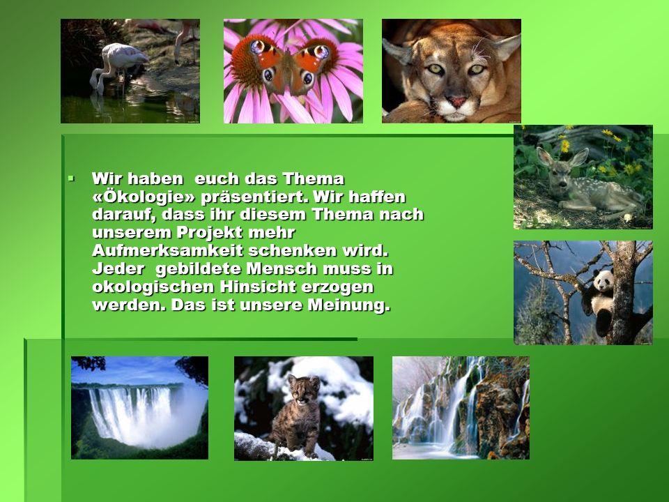 Wir haben euch das Thema «Ökologie» präsentiert