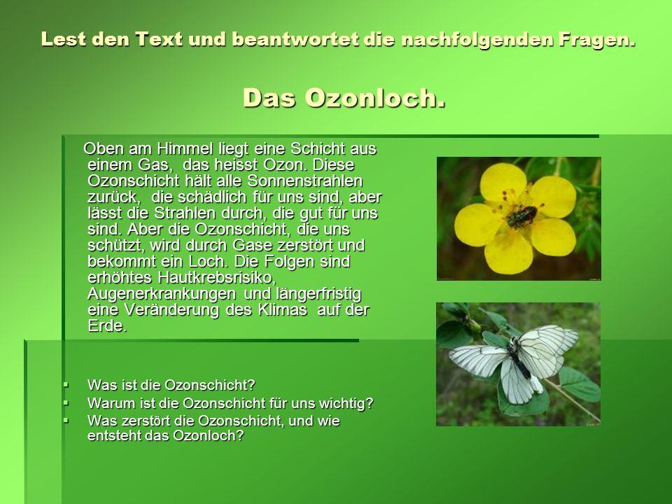 Lest den Text und beantwortet die nachfolgenden Fragen. Das Ozonloch.