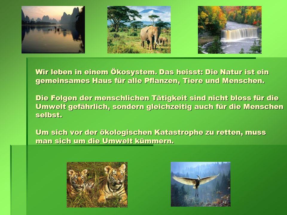Wir leben in einem Ökosystem