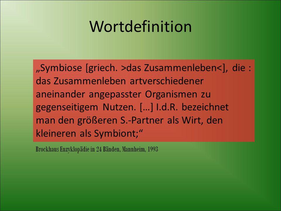 Wortdefinition