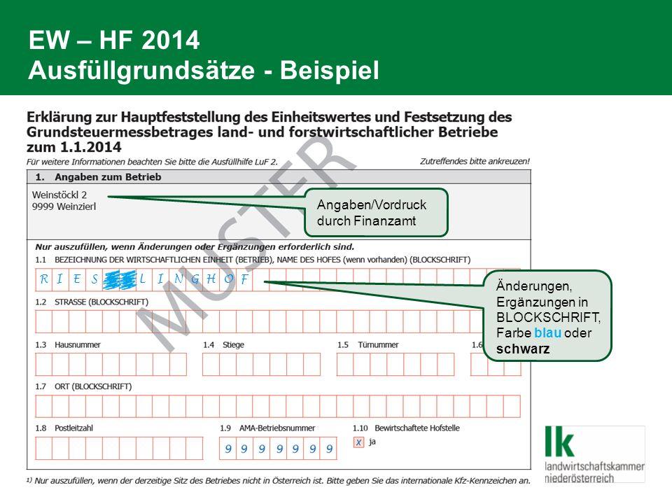 EW – HF 2014 Ausfüllgrundsätze - Beispiel