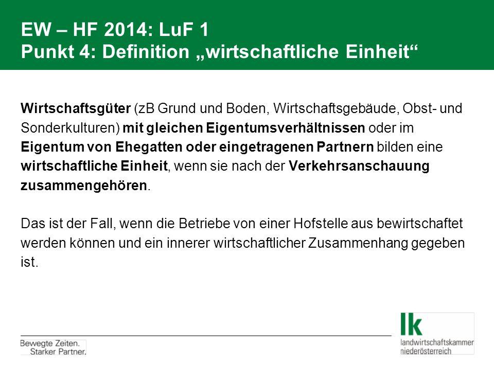 """EW – HF 2014: LuF 1 Punkt 4: Definition """"wirtschaftliche Einheit"""