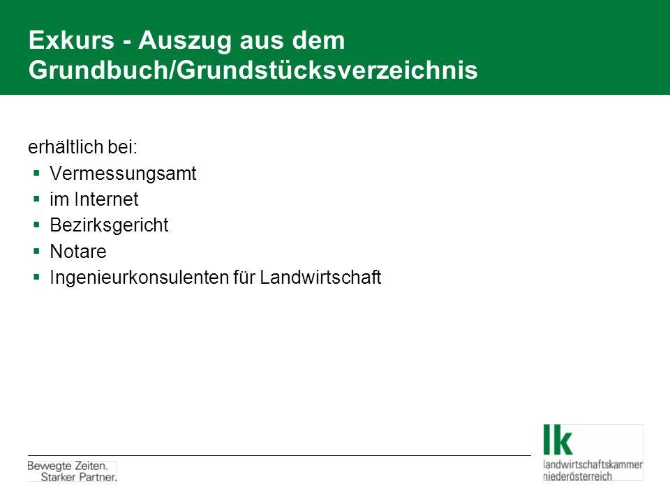 Exkurs - Auszug aus dem Grundbuch/Grundstücksverzeichnis