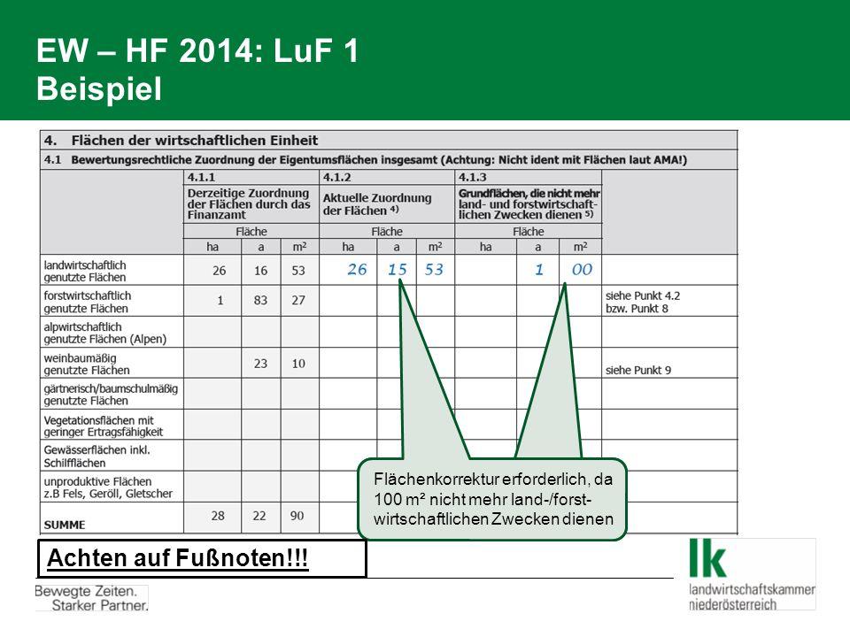 EW – HF 2014: LuF 1 Beispiel Achten auf Fußnoten!!!