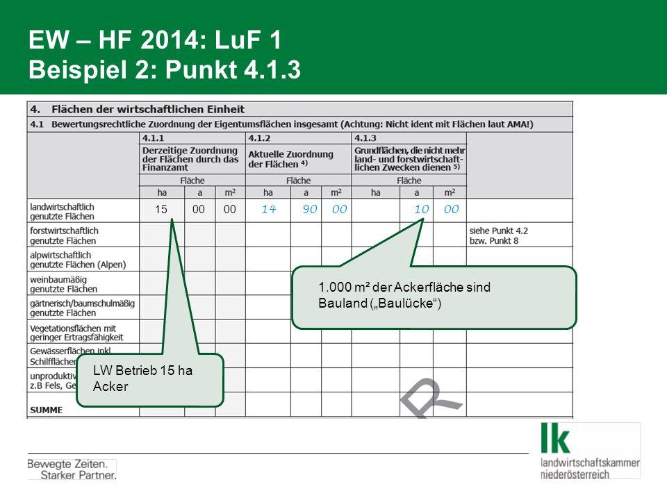 EW – HF 2014: LuF 1 Beispiel 2: Punkt 4.1.3