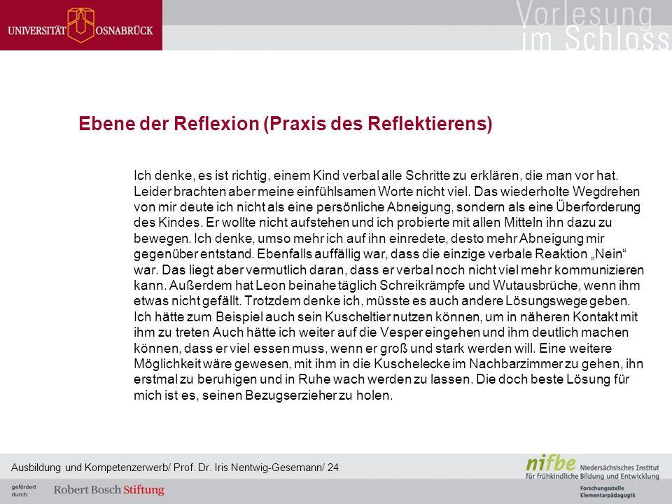 Ebene der Reflexion (Praxis des Reflektierens)