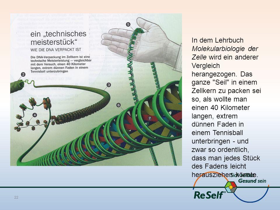 In dem Lehrbuch Molekularbiologie der Zelle wird ein anderer Vergleich herangezogen.