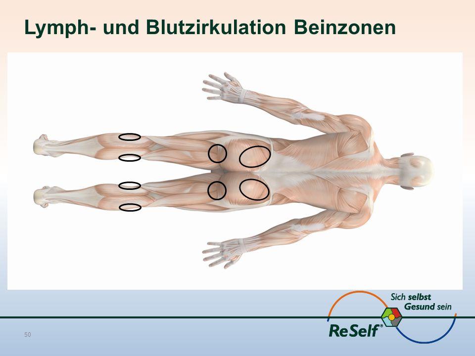 Lymph- und Blutzirkulation Beinzonen