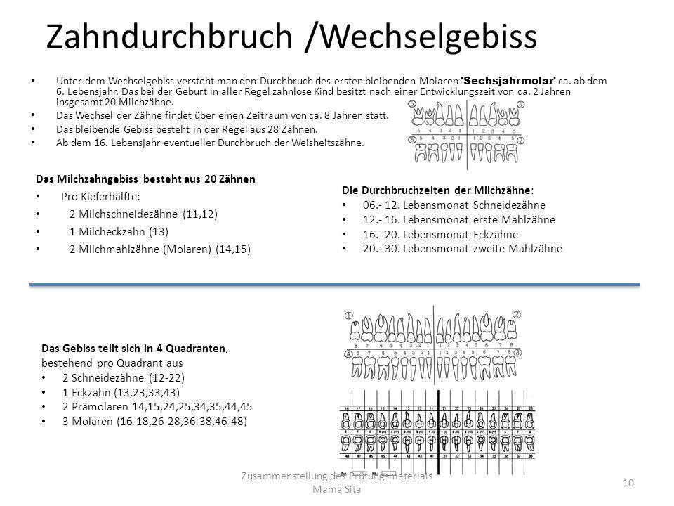 Zahndurchbruch /Wechselgebiss