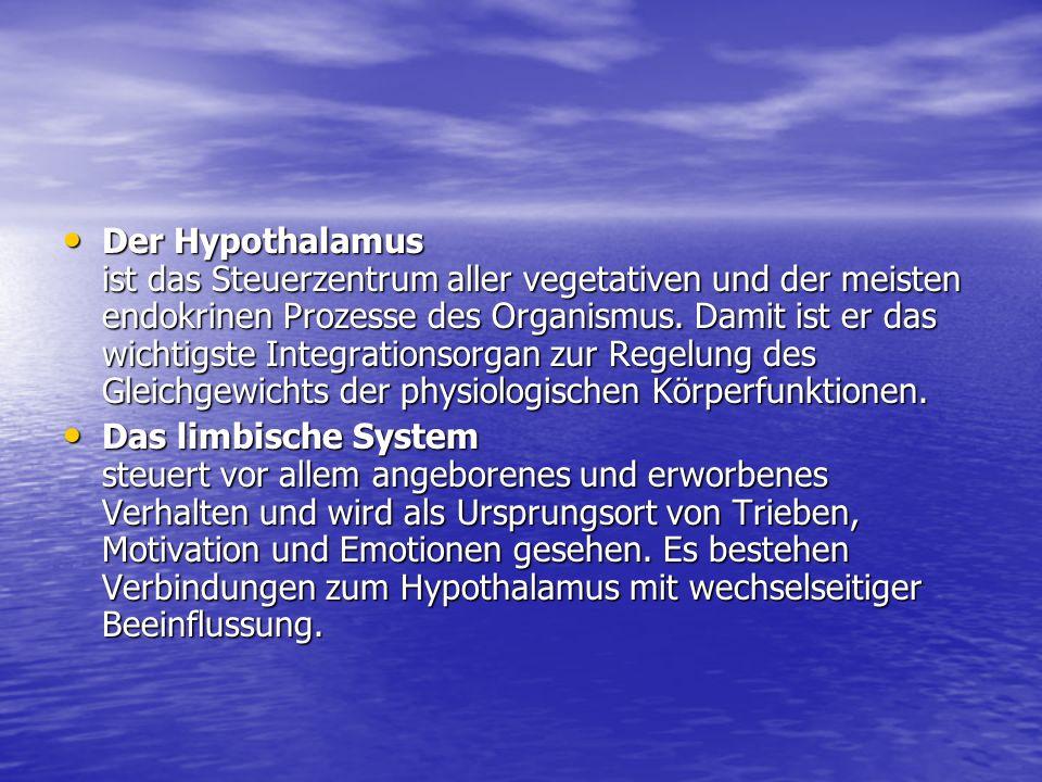 Der Hypothalamus ist das Steuerzentrum aller vegetativen und der meisten endokrinen Prozesse des Organismus. Damit ist er das wichtigste Integrationsorgan zur Regelung des Gleichgewichts der physiologischen Körperfunktionen.