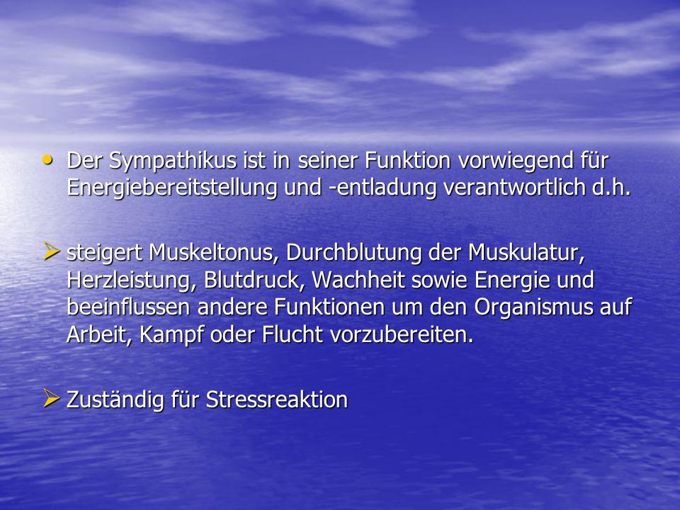 Der Sympathikus ist in seiner Funktion vorwiegend für Energiebereitstellung und -entladung verantwortlich d.h.