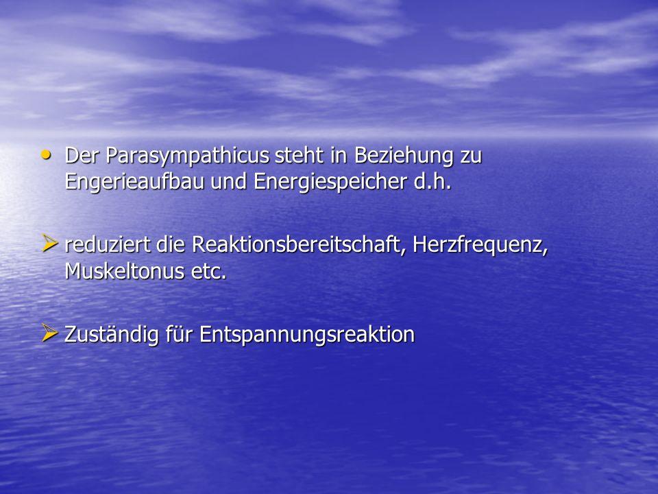 Der Parasympathicus steht in Beziehung zu Engerieaufbau und Energiespeicher d.h.