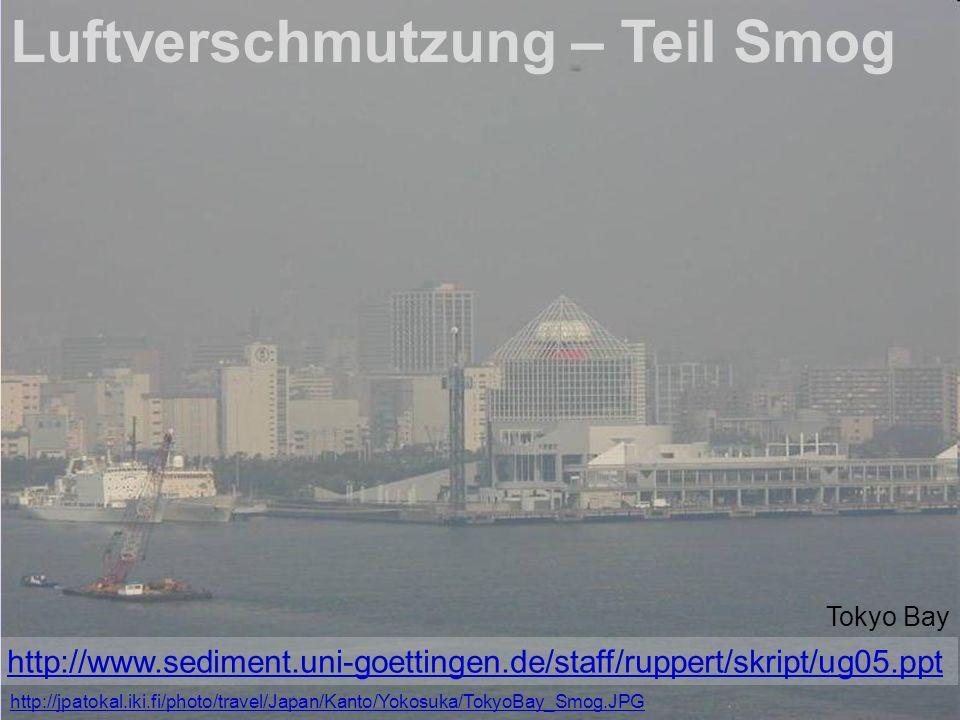 Luftverschmutzung – Teil Smog
