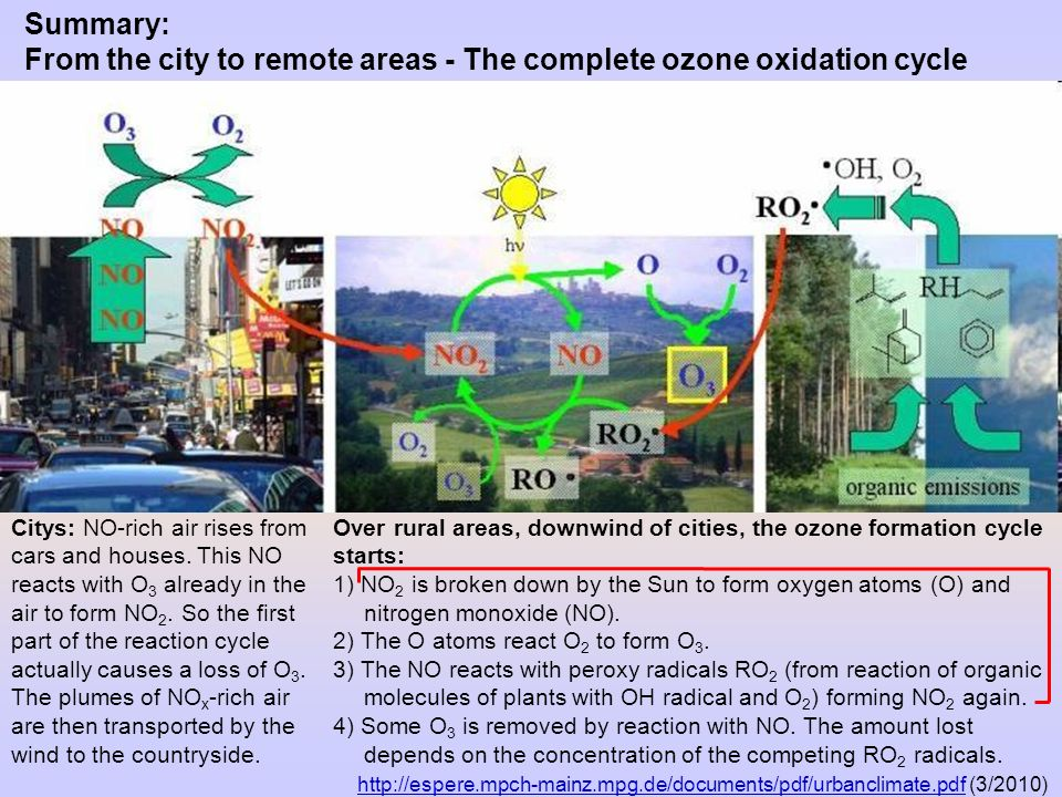 From the city to remote areas - The complete ozone oxidation cycle