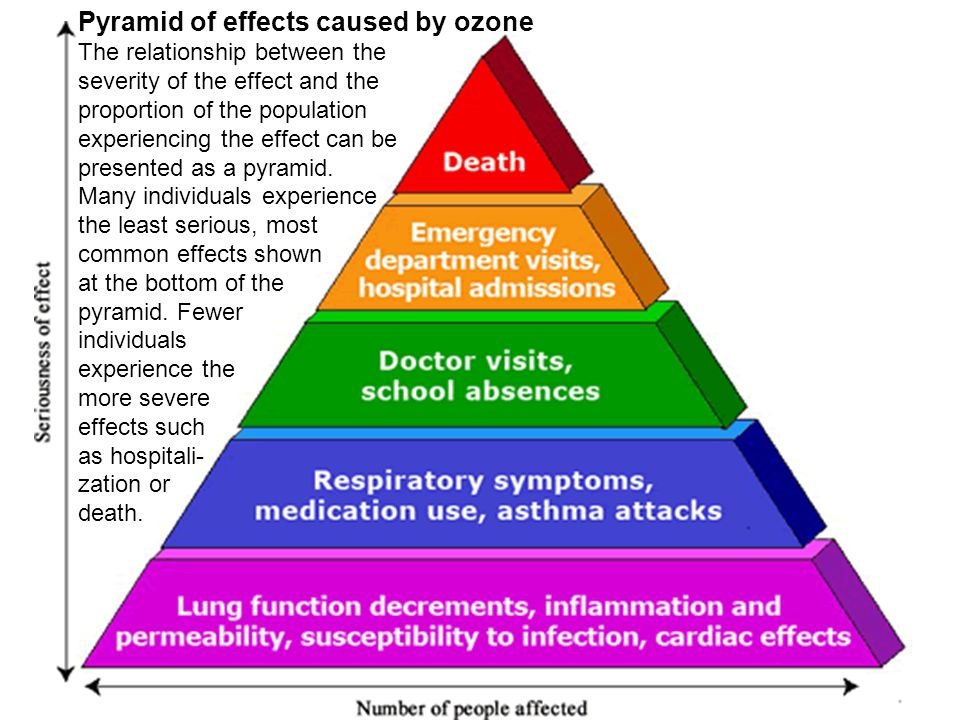 Pyramid of effects caused by ozone The relationship between the