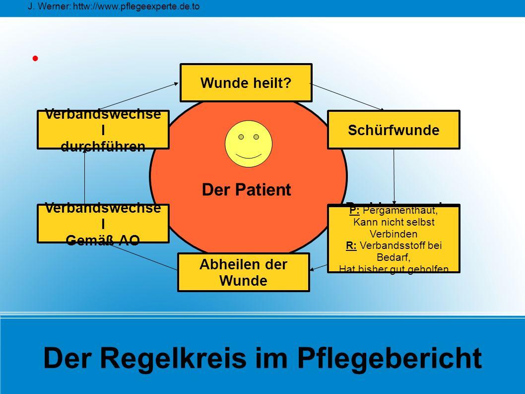 Der Regelkreis im Pflegebericht