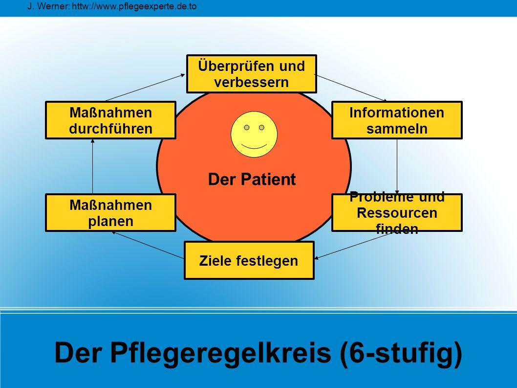 Der Pflegeregelkreis (6-stufig)