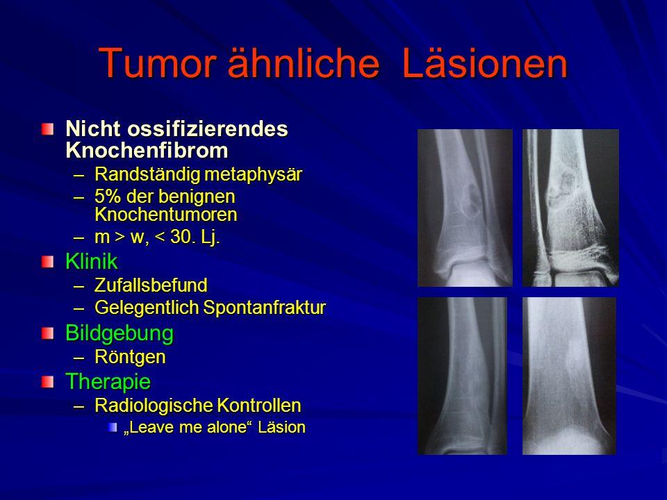 Tumor ähnliche Läsionen