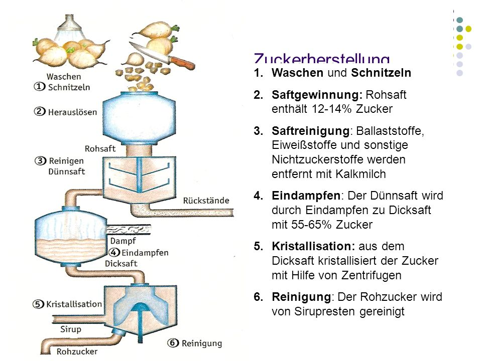 Zuckerherstellung Waschen und Schnitzeln