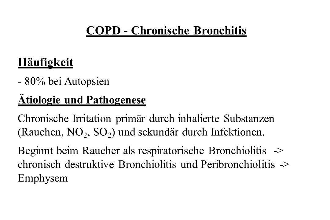 COPD - Chronische Bronchitis