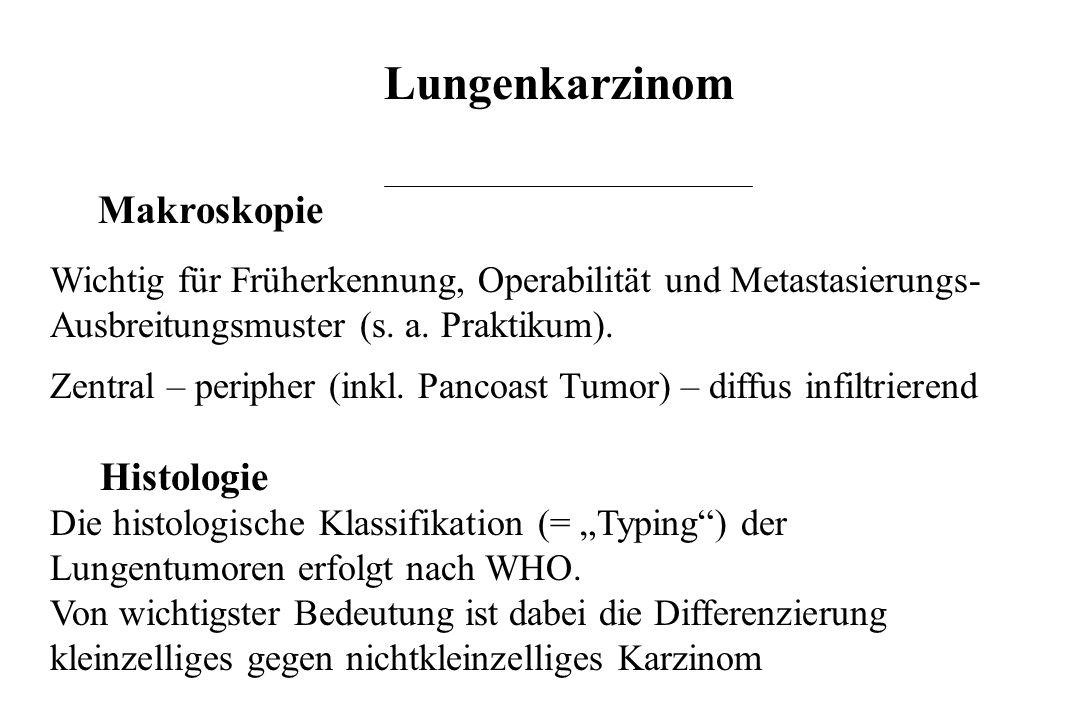 Lungenkarzinom Makroskopie Histologie