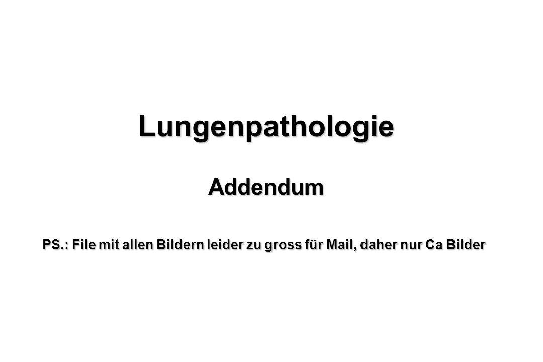 Lungenpathologie Addendum