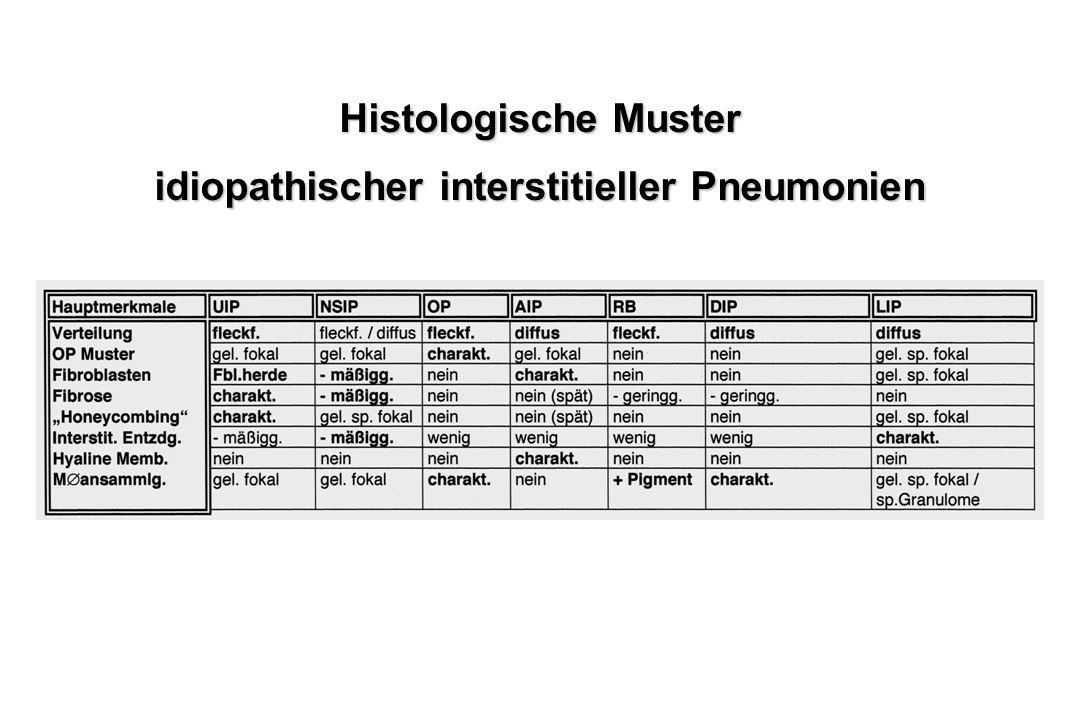 idiopathischer interstitieller Pneumonien