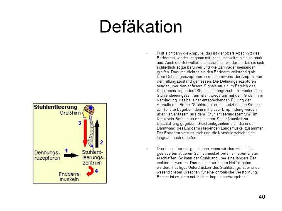 Defäkation