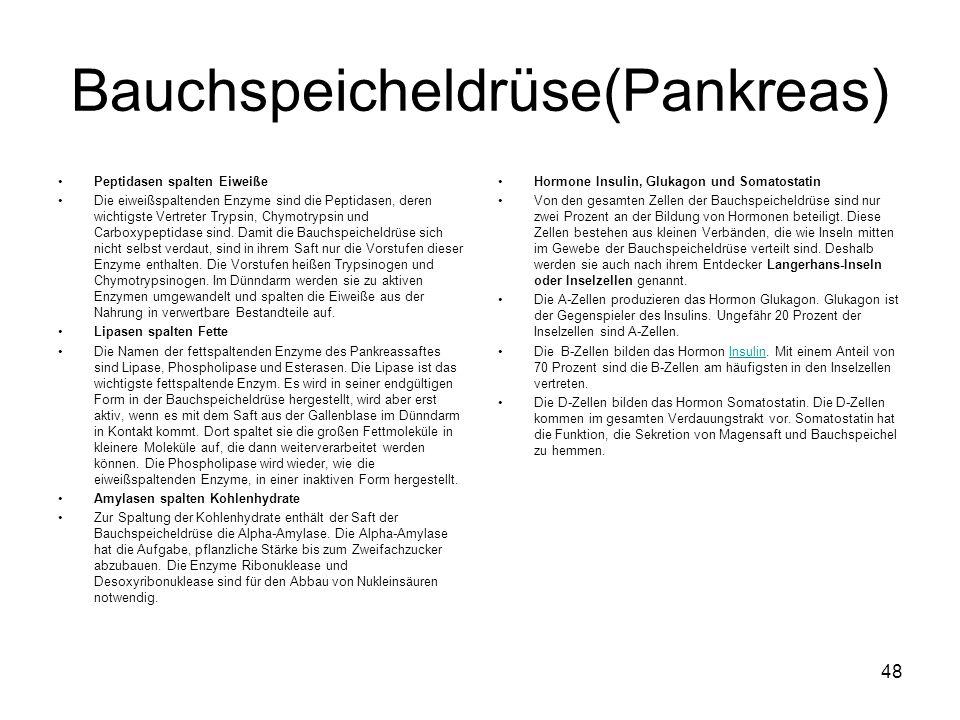 Bauchspeicheldrüse(Pankreas)