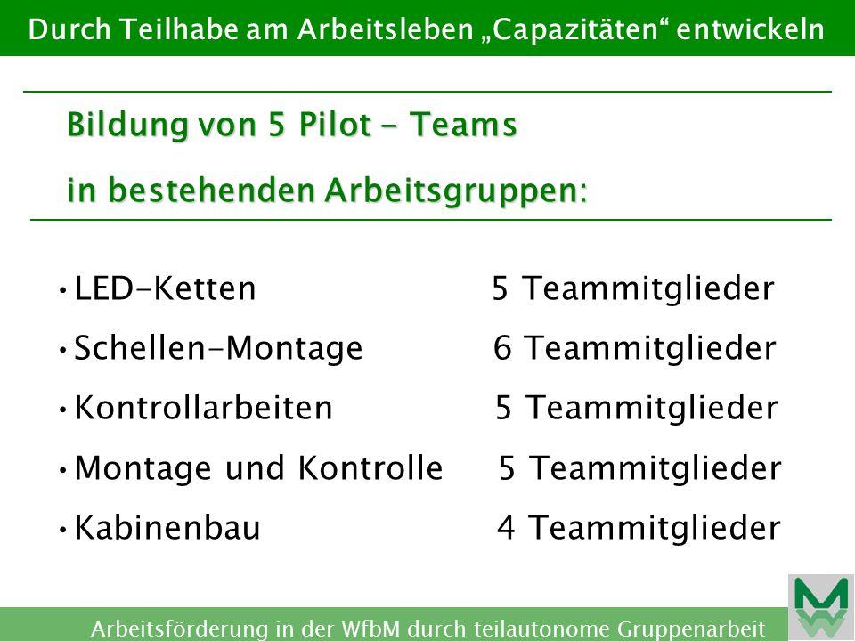 Bildung von 5 Pilot - Teams in bestehenden Arbeitsgruppen:
