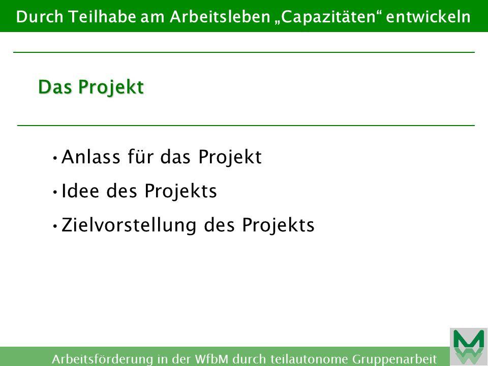 Zielvorstellung des Projekts