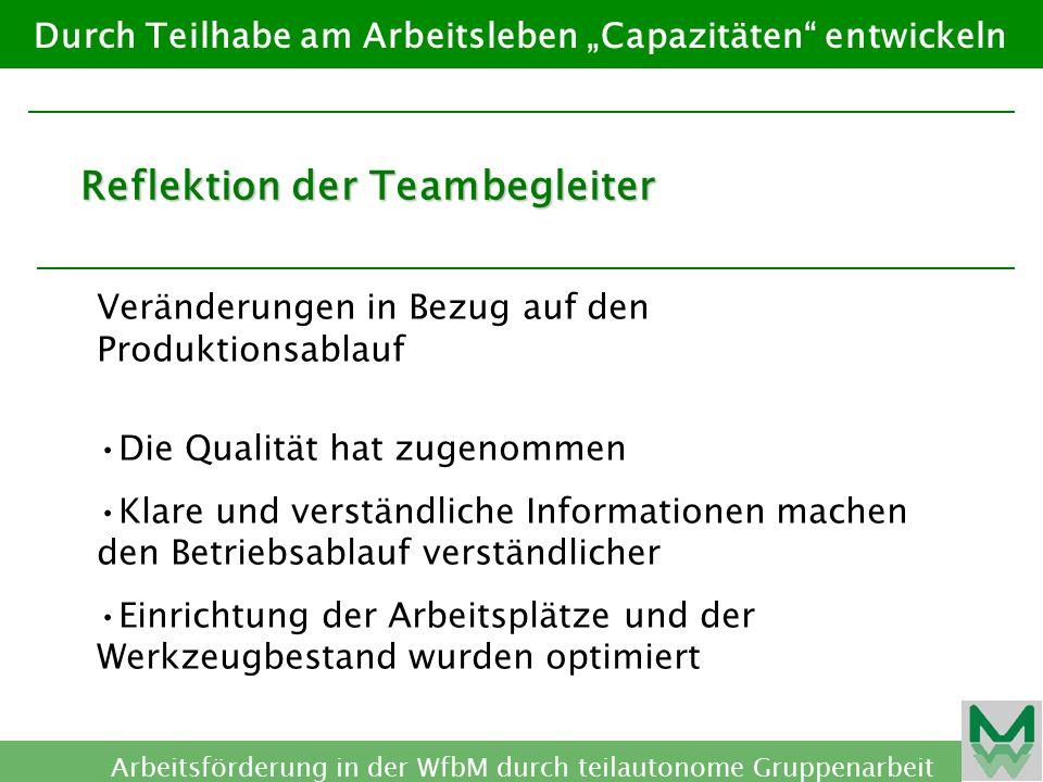 Reflektion der Teambegleiter