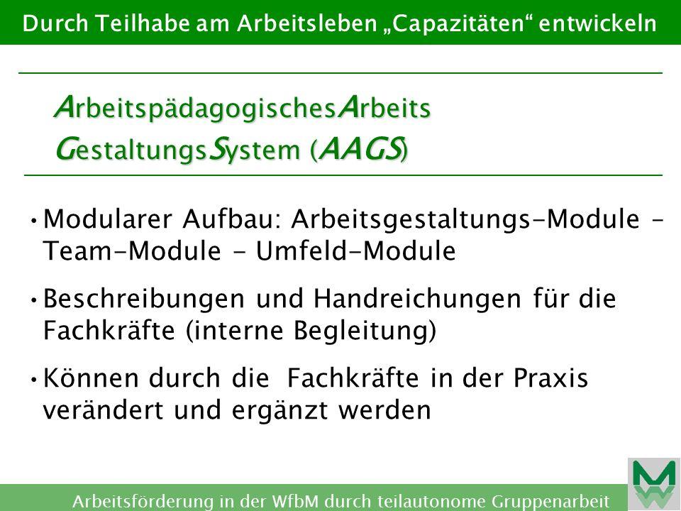 ArbeitspädagogischesArbeits GestaltungsSystem (AAGS)
