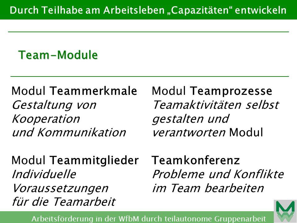 Modul Teammerkmale Gestaltung von Kooperation