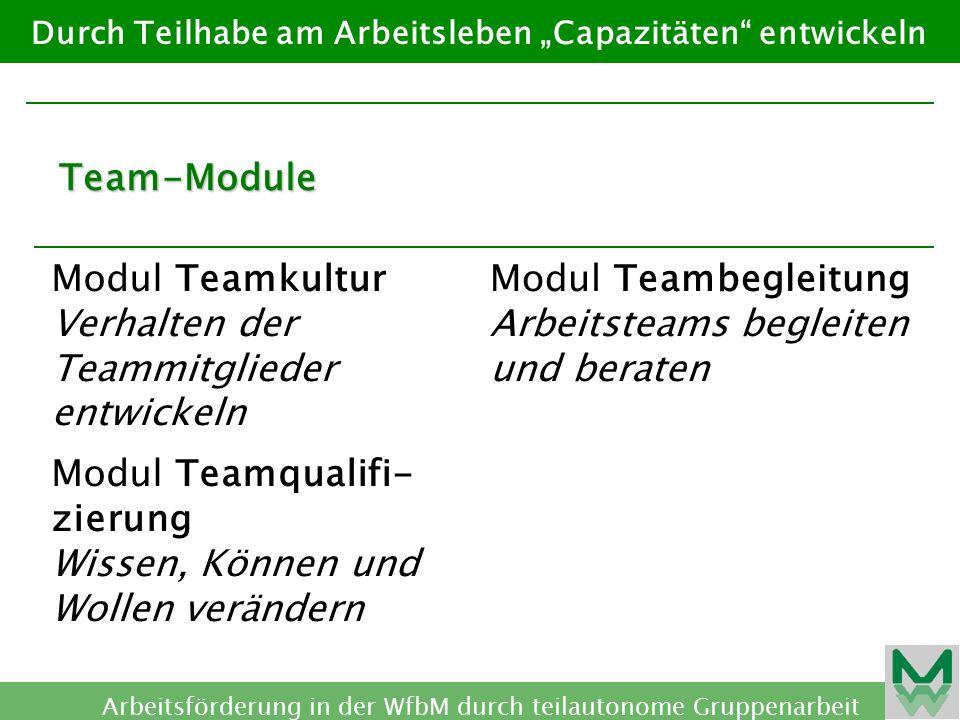 Modul Teamkultur Verhalten der Teammitglieder entwickeln