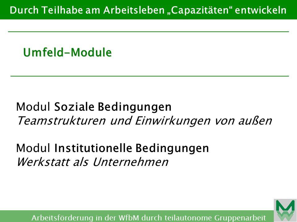 Modul Soziale Bedingungen Teamstrukturen und Einwirkungen von außen