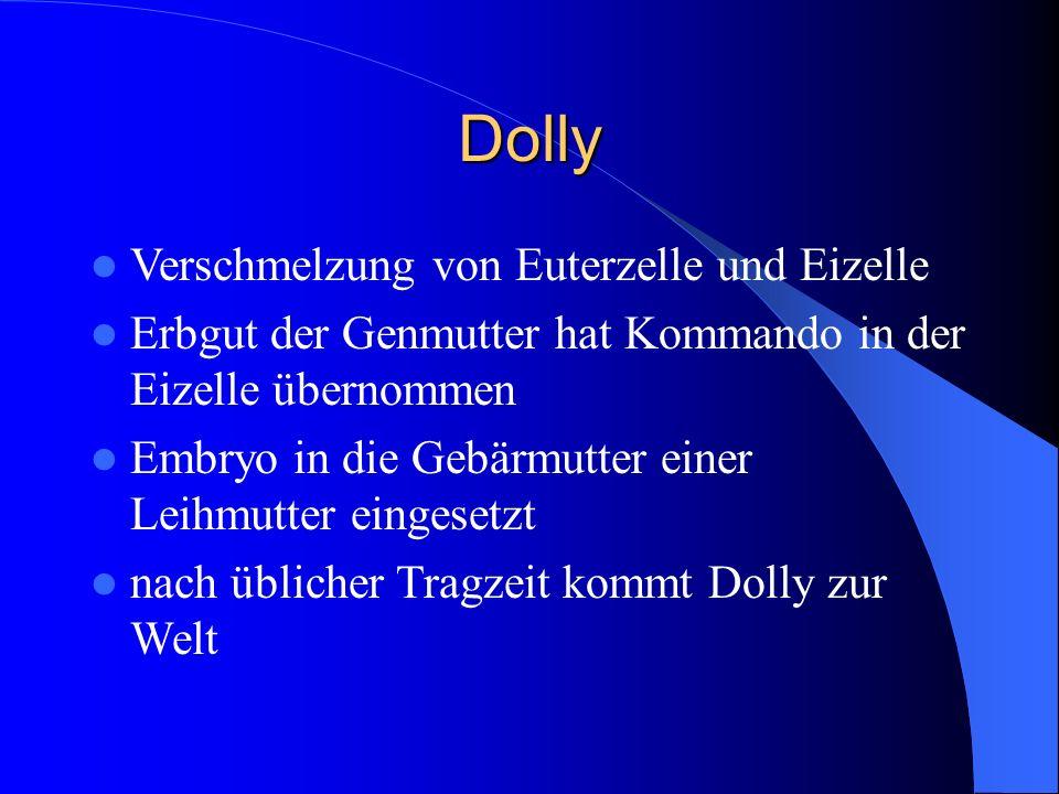 Dolly Verschmelzung von Euterzelle und Eizelle