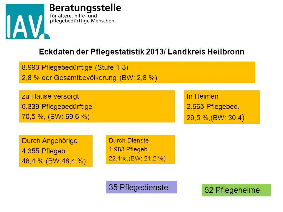 Eckdaten der Pflegestatistik 2013/ Landkreis Heilbronn