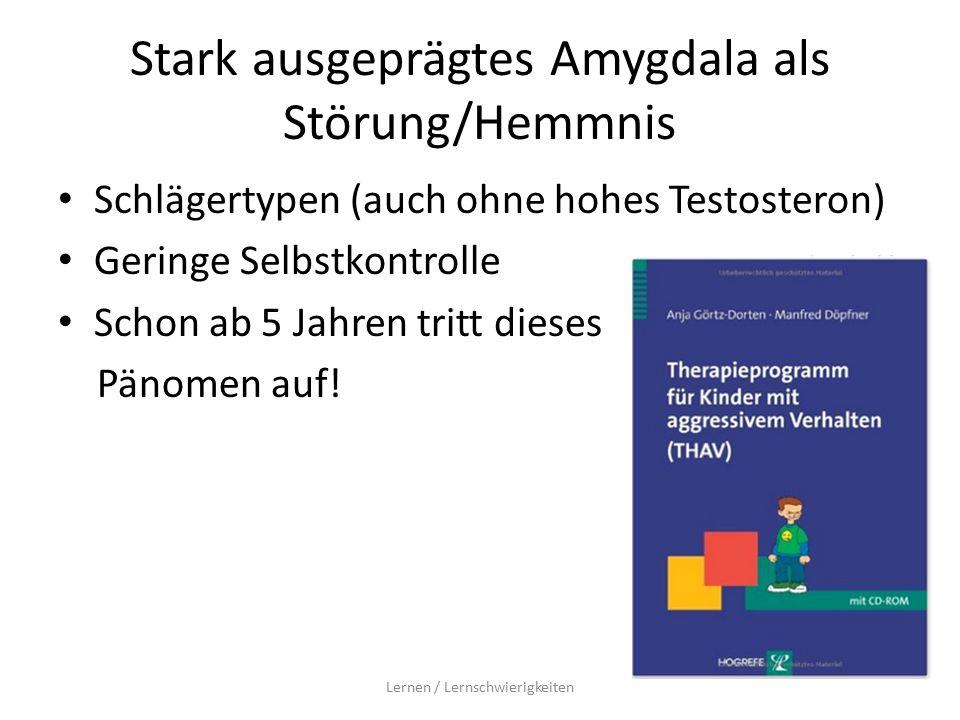 Stark ausgeprägtes Amygdala als Störung/Hemmnis