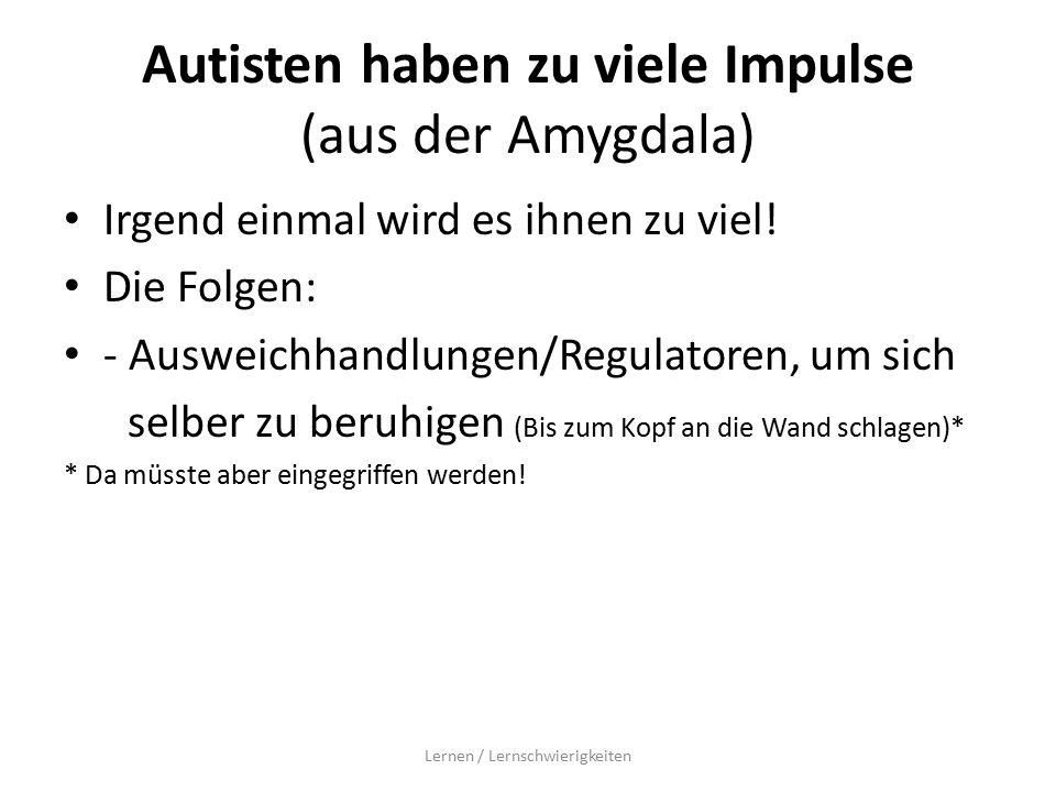 Autisten haben zu viele Impulse (aus der Amygdala)