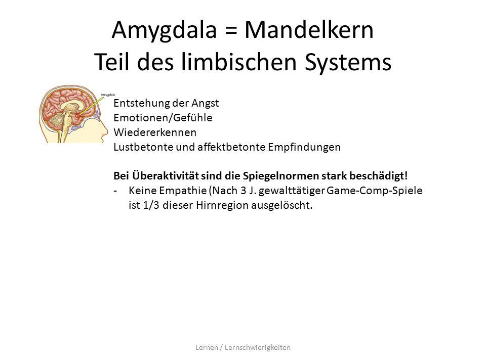 Amygdala = Mandelkern Teil des limbischen Systems