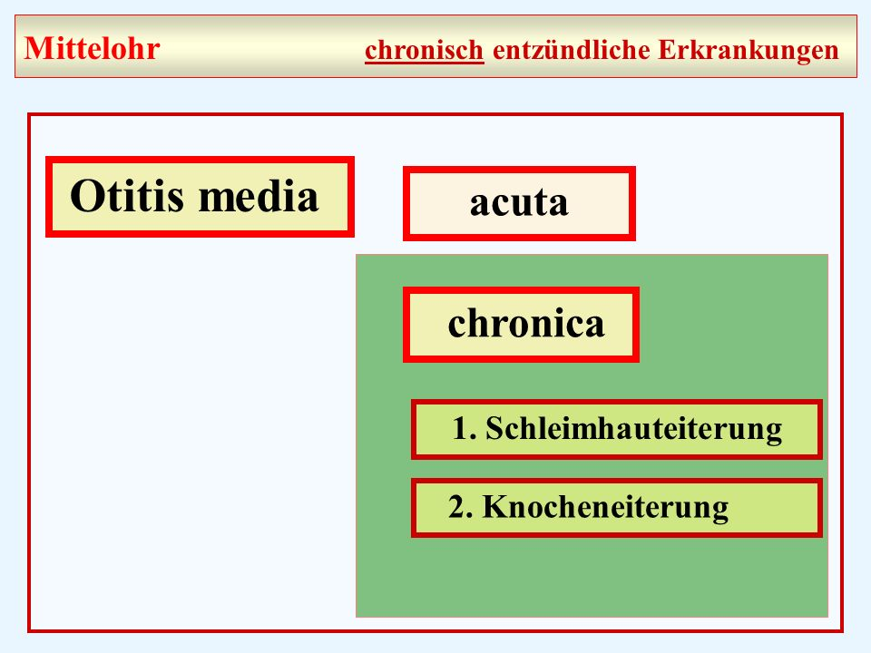 Otitis media acuta chronica