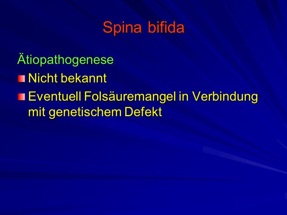 Spina bifida Ätiopathogenese Nicht bekannt