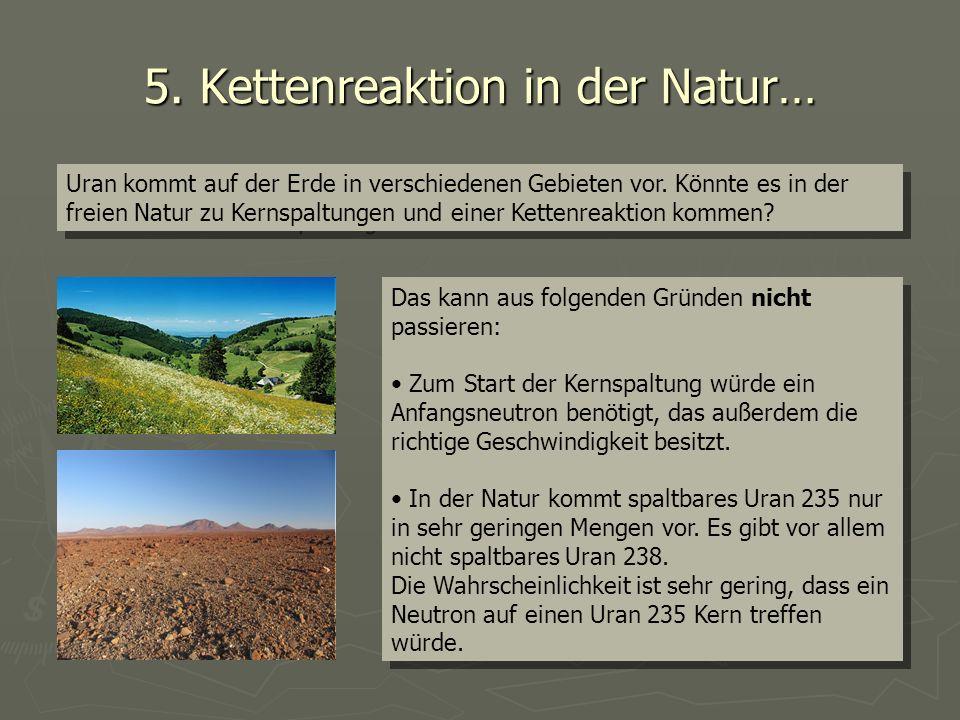5. Kettenreaktion in der Natur…