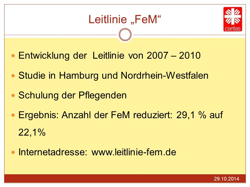 """Leitlinie """"FeM Entwicklung der Leitlinie von 2007 – 2010"""