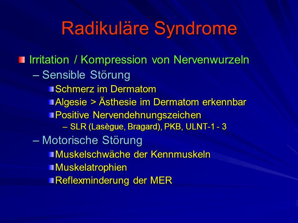 Radikuläre Syndrome Irritation / Kompression von Nervenwurzeln