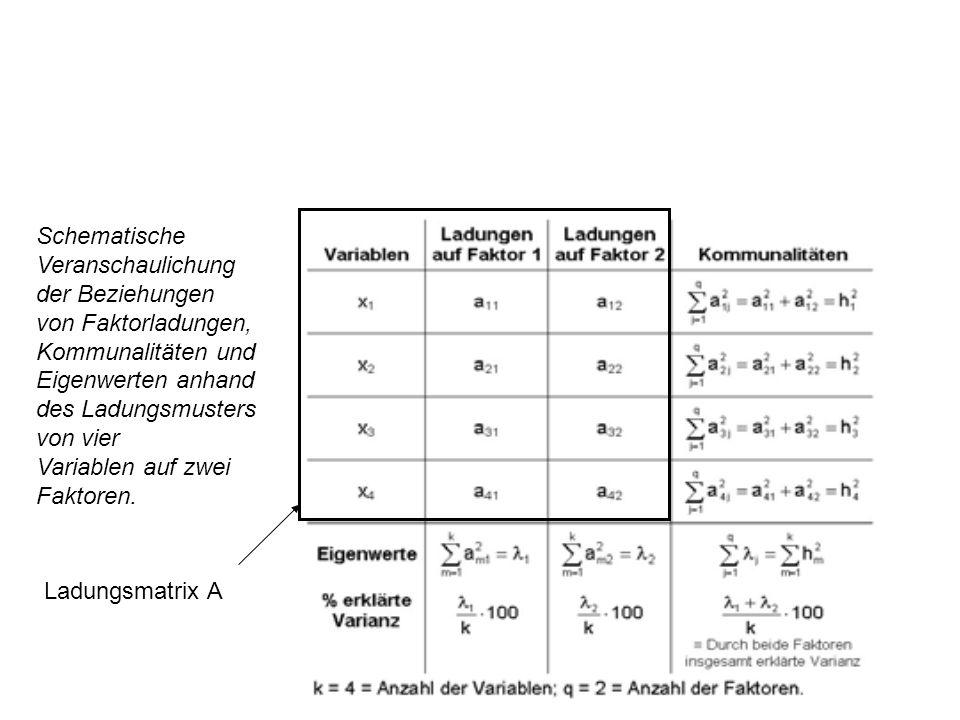 Schematische Veranschaulichung. der Beziehungen. von Faktorladungen, Kommunalitäten und. Eigenwerten anhand.