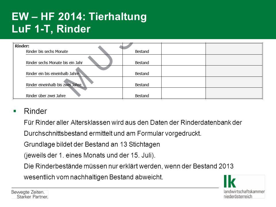 EW – HF 2014: Tierhaltung LuF 1-T, Rinder