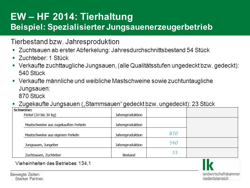 EW – HF 2014: Tierhaltung Beispiel: Spezialisierter Jungsauenerzeugerbetrieb