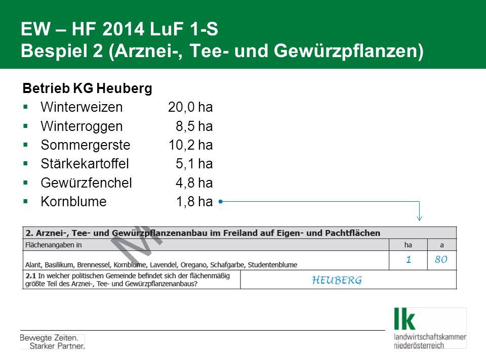 EW – HF 2014 LuF 1-S Bespiel 2 (Arznei-, Tee- und Gewürzpflanzen)